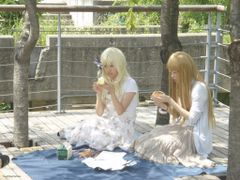 Cosplay venues by <b>stephan Seo</b> ( a Panoramio image )