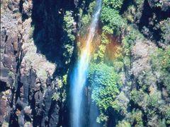 """Waipo""""o falls by <b>@mabut</b> ( a Panoramio image )"""