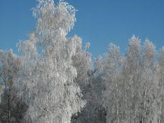 Rety - Termeszetvedelmi terulet by <b>Toro Attila</b> ( a Panoramio image )