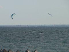 Kitesurfing by <b>S_Mori</b> ( a Panoramio image )