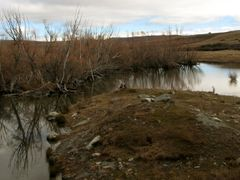 Lake Mcgregor outflow into Lake Tekapo by <b>batchee</b> ( a Panoramio image )