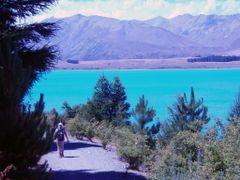 Lake Tekapo New Zealand by <b>? PhotoKazia ?</b> ( a Panoramio image )