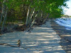 Elk Island, Lake Winnipeg by <b>Olek A. Borsuk</b> ( a Panoramio image )