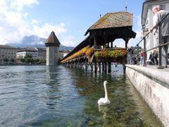 Kapell Brucke, Lucerne Switzerland by <b>Leland Stanford</b> ( a Panoramio image )