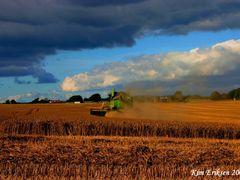 Harvester Forlev..2008 by <b>-HARMONSA-</b> ( a Panoramio image )