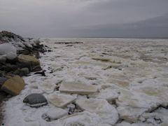 Frozen riverside by <b>RoadMode</b> ( a Panoramio image )