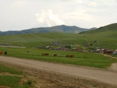 Near Khutag by <b>selenge</b> ( a Panoramio image )
