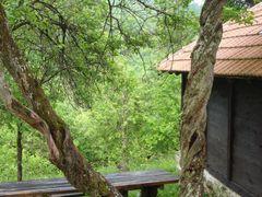 Hram Svetog Lazara - Sljive koje se uvrcu by <b>ZNikolic</b> ( a Panoramio image )