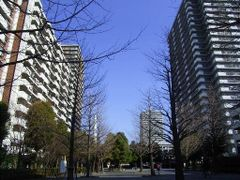 Hikarigaoka apartment buildings by <b>toritencat</b> ( a Panoramio image )