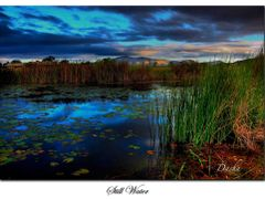Still Water by <b>dashalive</b> ( a Panoramio image )