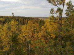 Ruska by <b>mi16</b> ( a Panoramio image )