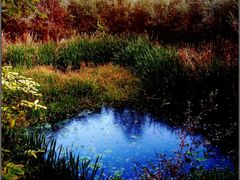 Watercourse-Near Vardar River by <b>Neim Sejfuli ?</b> ( a Panoramio image )