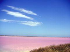 Pink Lake 21.02.2007 by <b>papmornou</b> ( a Panoramio image )