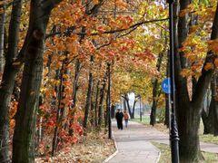 Las Lindego, autumn by <b>Hiup (Hubert)</b> ( a Panoramio image )