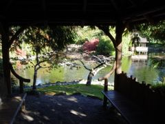 Royal Roads Japanese Garden by <b>Tom C.</b> ( a Panoramio image )