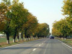 RUMANIA Slobozia by <b>Talavan</b> ( a Panoramio image )