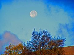 Braemar After  Noon Moon. by <b>Scally</b> ( a Panoramio image )