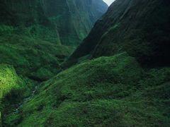 Jurassic by <b>@mabut</b> ( a Panoramio image )