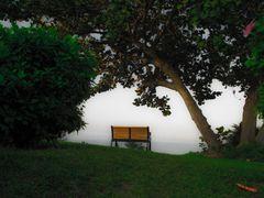 Без названия by <b>Joseph Lam</b> ( a Panoramio image )
