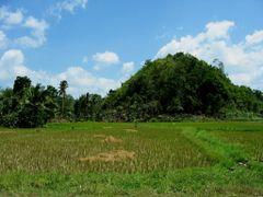 Chocolate Hills, Bohol Island by <b>TineMeier</b> ( a Panoramio image )