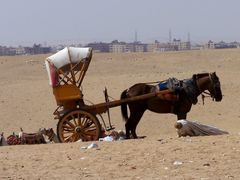 un taxi a Giza by <b>patano</b> ( a Panoramio image )