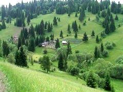Comuna Galautas-Catunul Zapode (Hamlet Zapode) by <b>B@sty</b> ( a Panoramio image )