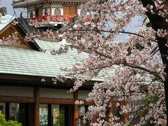 Без названия by <b>masahiro okumura</b> ( a Panoramio image )