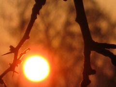 sunrise by <b>marita1004 - VIEWS? No, thanks!</b> ( a Panoramio image )