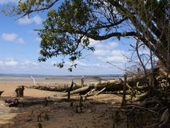 Hidden beach at Shelly Beach by <b>kiwifish</b> ( a Panoramio image )