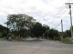 Avenida del Maestro by <b>Jose Manuel Repetto Menendez</b> ( a Panoramio image )