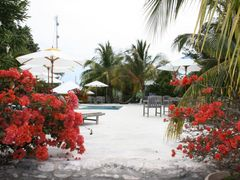 Staniel cay by <b>JacquesOuellet</b> ( a Panoramio image )