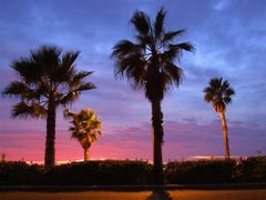 California > Carlsbad > Sunset at Carlsbad Blvd by <b>©JPix</b> ( a Panoramio image )