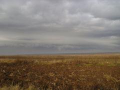tr by <b>Ovidiu Albu</b> ( a Panoramio image )