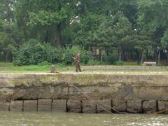 North Korean border guard by <b>vqmalic</b> ( a Panoramio image )