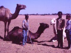 Agadez: Con nuestros amigos, los ninos. by <b>La Casa del Chiflon (Bulnes)</b> ( a Panoramio image )