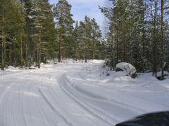 snow road by <b>shrekas</b> ( a Panoramio image )
