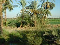 Cesta z Luxoru do Hurghady - QENA by <b>© Ludo T. 01.</b> ( a Panoramio image )