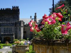 Hatley Castle by <b>Senia IS</b> ( a Panoramio image )