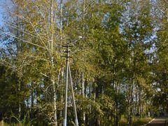 Осенний парк by <b>sonar4wd</b> ( a Panoramio image )