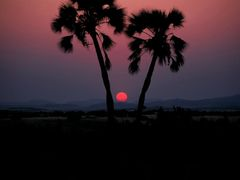 Sunset at Palmwag - Damaraland, Namibia by <b>Francesco Villa</b> ( a Panoramio image )