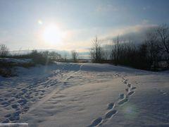 Вид на оз. Ильмень от церкви Николы-на-Липне by <b>codenet</b> ( a Panoramio image )