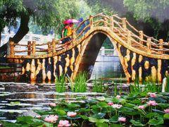 Lotus pond  by <b>maxianting</b> ( a Panoramio image )