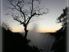 Tree, Sunset by <b>OxyPhoto.ru - O x y</b> ( a Panoramio image )