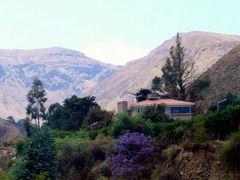 UNA CASA EN TIQUIPAYA by <b>paco villar</b> ( a Panoramio image )
