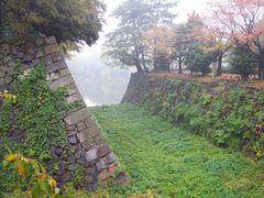 Overgrown waterway by <b>Kirk Cumming</b> ( a Panoramio image )