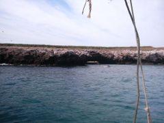 La isla del amor(punta mita) by <b>djelias</b> ( a Panoramio image )
