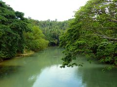 riverview from the bridge by <b>sunmaya</b> ( a Panoramio image )