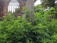 Celtic cross in Dunfermline Abbey Churchyard by <b>Marco Anastasi</b> ( a Panoramio image )