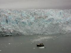 Glacier Bay Alaska by <b>Hank Waxman</b> ( a Panoramio image )