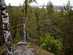 Kuivaketveleen linnavuori by <b>Sampo Kiviniemi</b> ( a Panoramio image )